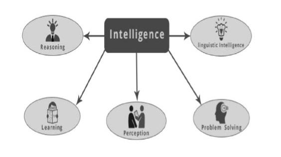 intelligenc